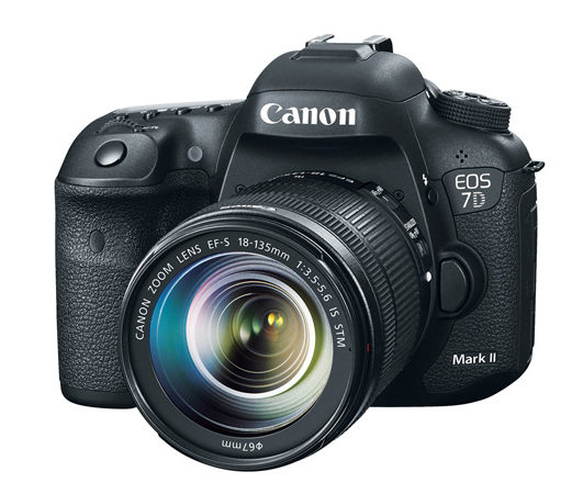 More Information On Unreleased Canon Camera (EOS 90D/EOS 7D Mark III?)