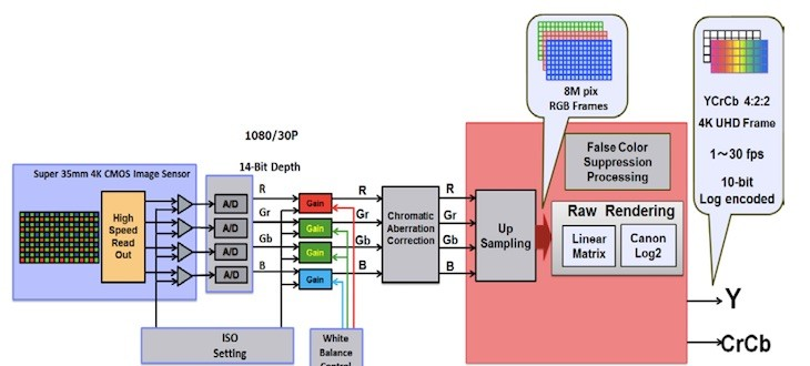 Canon C300 Mark II White Paper Published (insights In Canon's Super 35mm Sensor Technology)