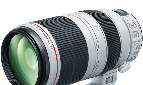 Canon EF 100-400mm F/4.5-5.6L IS Mark II Review (DPReview Gold Award)