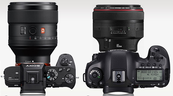canon ef 85mm f1 2 vs sony 85mm f1 4 gm comparison canonwatch. Black Bedroom Furniture Sets. Home Design Ideas