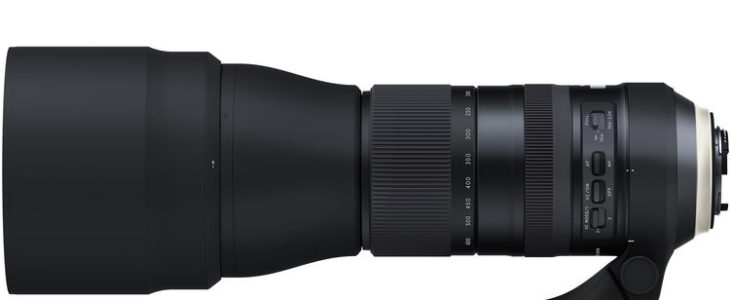 Tamron SP 150-600mm F5-6.3 G2 Sample Image Gallery