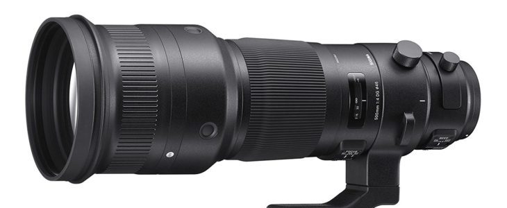 Sigma 500mm F/4 DG OS HSM Sports Review (no Sacrifice In Image Quality, Photography Blog)