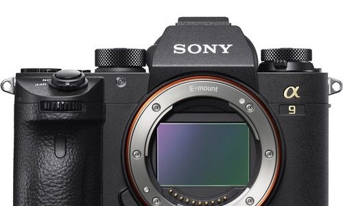 Off Brand: Sony A9 Available For Pre-order