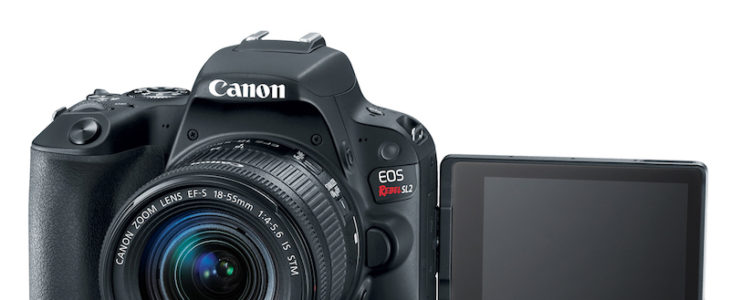 Canon Rebel SL2 In Stock And Ready To Ship
