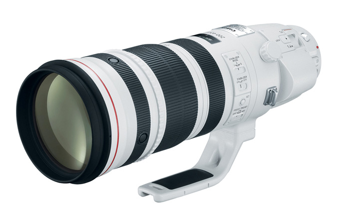 Canon EF 200-400mm F/4L IS Extender 1.4x Lens Firmware Update Released (ver. 1.1.0)