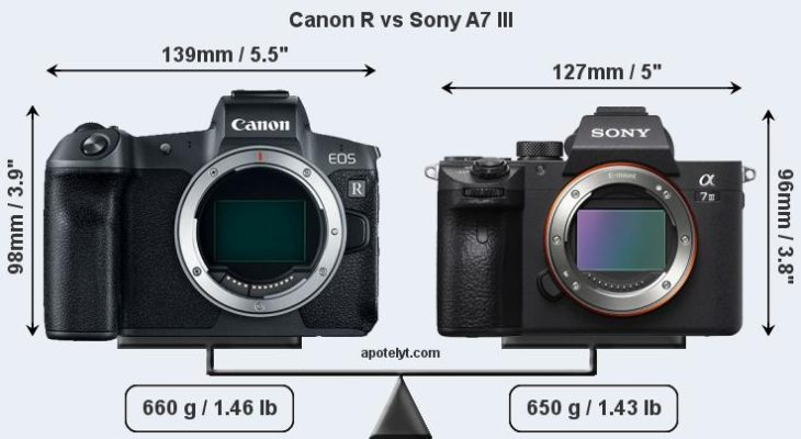 Canon EOS R Vs Sony A7 III For Video Productions – Which One Is Better?