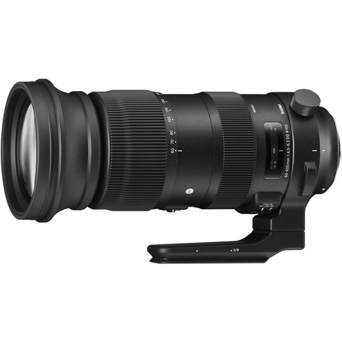 Sigma 60-600mm F/4.5-6.3 DG OS HSM Sports Lens In Stock And Ready To Ship At Focus Camera