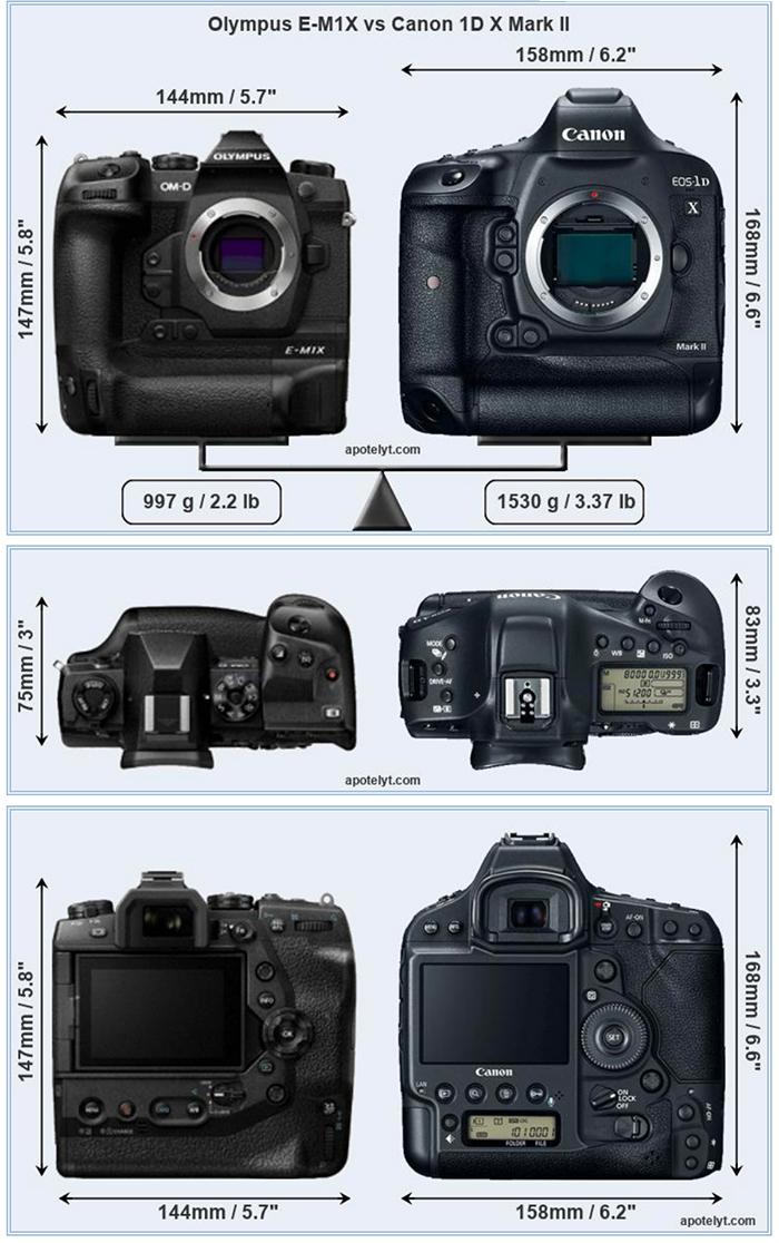 Olympus E M1x Vs Canon 1d X Mark Ii Size And Specification Comparison