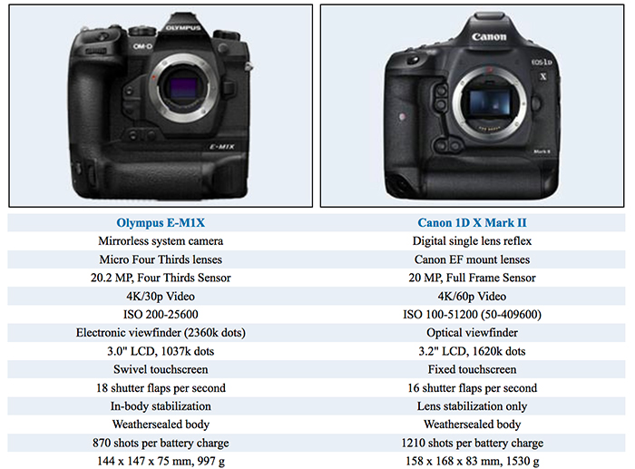Olympus E-M1X Vs Canon 1D-X Mark II Size And Specification Comparison