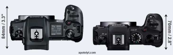 canon-r-vs-canon-r-p-top-a-730x234.jpg