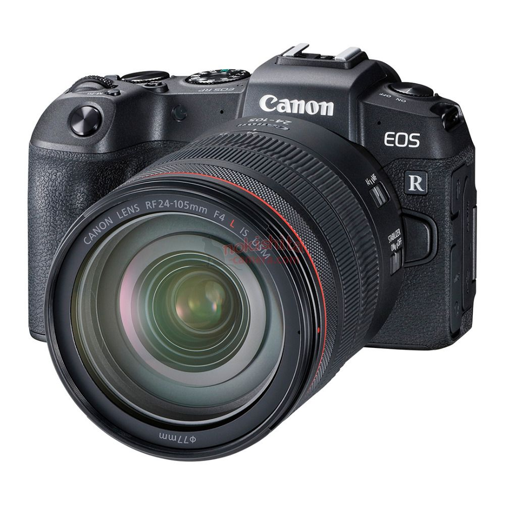 Canon EOS RP Review - Pro and Cons For Wildlife Photography, And
