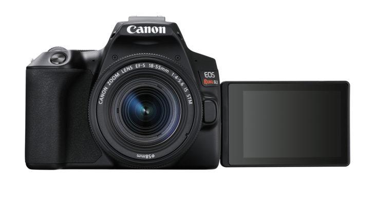 Canon Rebel SL3 vs Nikon D3500 Size Comparison – CanonWatch