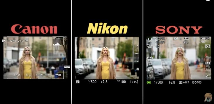 How Good Is Nikon Z 6/Z 7 Eye AF And Can It Compare With Canon And Sony?