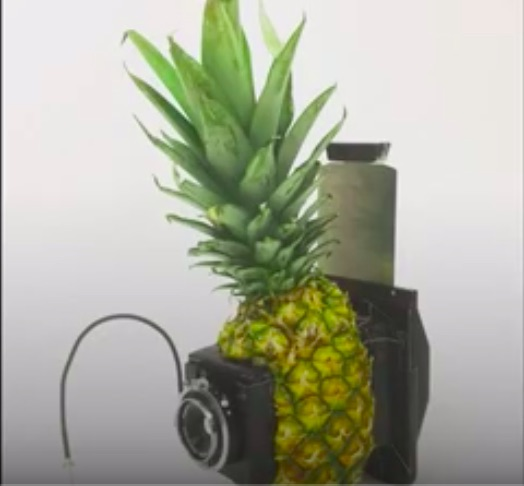 How To Build A Working Camera Out Of Anything (Lego And Pineapples Included)