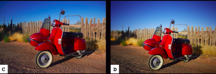 Fujifilm Color Science Vs Canon Color Science – A Quick Comparison
