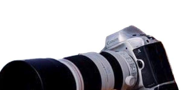 Canon Eos 1d X Mark Iii Rumor