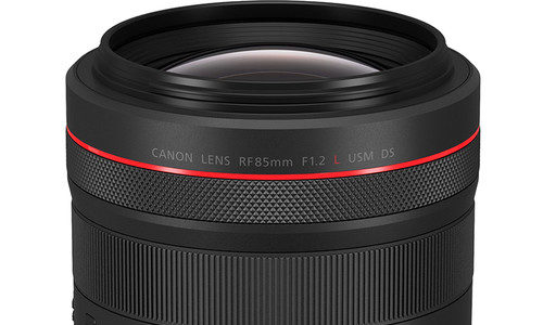 Canon RF 85mm F/1.2 DS Review