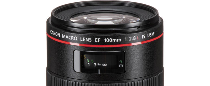EF 100mm F/2.8L IS Macro Review