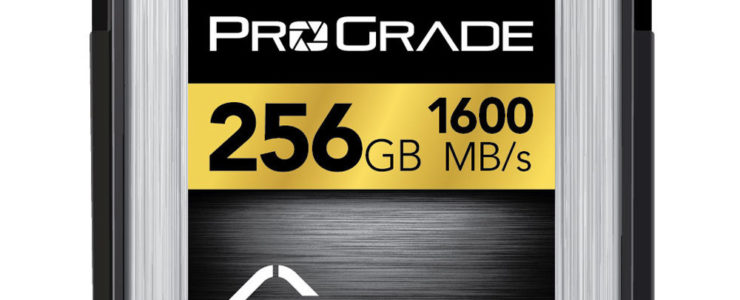 ProGrade 256GB