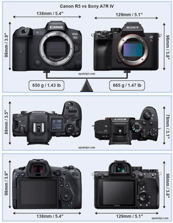 Sony a7r IV vs Canon EOS R5