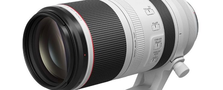 Canon RF 100-500mm F/4.5-7.1L IS Review
