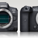 Canon EOS R5 Vs EOS R6 Comparison Review (NSFW)