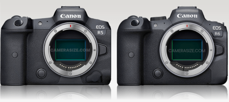 Canon EOS R5 Vs EOS R6 Vs Others Size Comparison (Nikon And Sony Included)