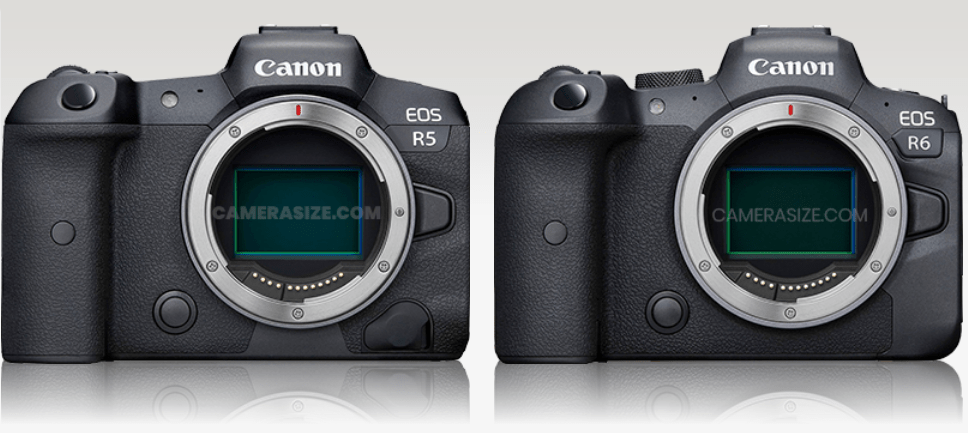 Eos R5 Vs Eos R6 Review