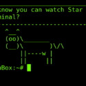 Friday Hacker Blogging: How To Watch Star Wars In Linux Terminal (and Update On Canon Hacker Attack)