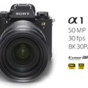 Sony Alpha 1 Vs Canon EOS R5 Image Quality Comparison