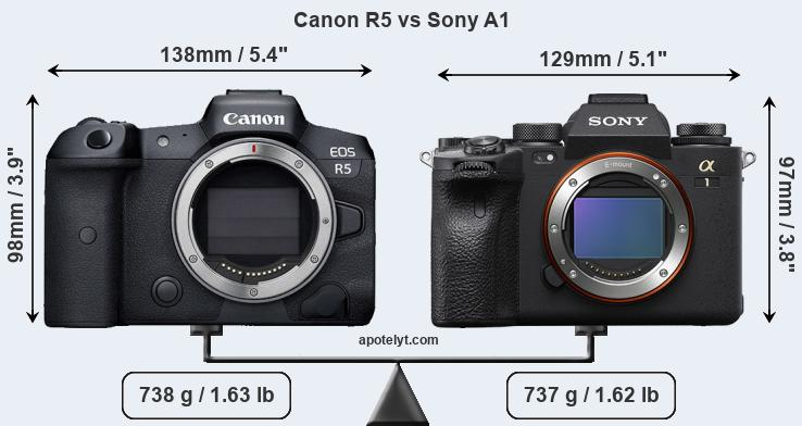 Sony Alpha A1 Vs Canon EOS R5