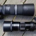 Olympus 300mm F/4 Vs Canon RF 600mm F/11 – FF Vs 4/3 Comparison